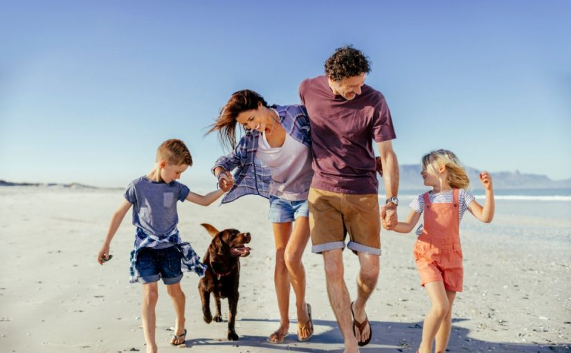 How to Keep Your Pet Safe at the Beach